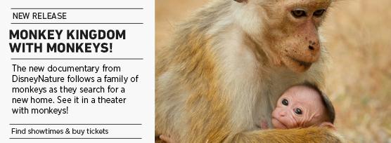 Banner: Monkey Kingdom (with monkeys)