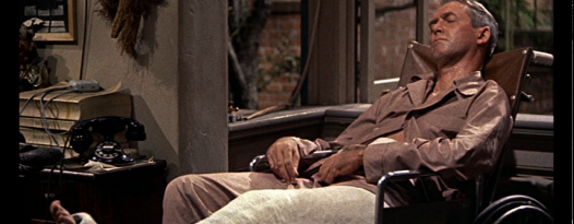 Celebrate a Hitchcock classic with a new digital print of REAR WINDOW