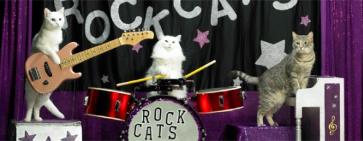 A rock band of ACTUAL CATS at The Ritz! FOR REAL!!!
