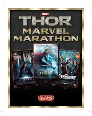 The THOR Marathon 2013