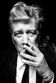 DAVID LYNCH SERIES PASS