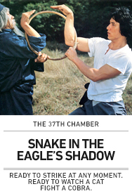 Poster: SNAKE IN THE EAGLE'S SHADOW The 37th Chamber