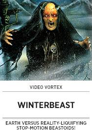 Poster: Video Vortex WINTERBEAST - 2014 upload