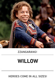 Poster: WILLOW 2015
