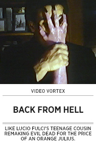 Poster: Video Vortex BACK FROM HELL - 2015 upload