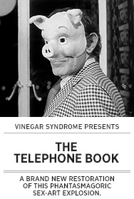 Poster: Vinegar Syndrome THE TELEPHONE BOOK