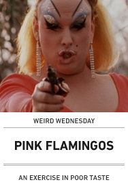 Poster: PINK FLAMINGOS